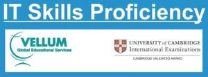IT_skills_proficiency